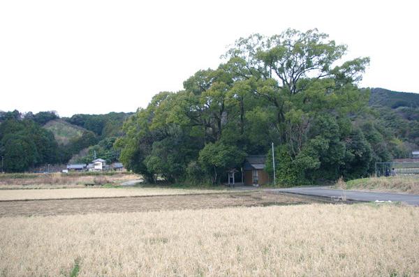 田中神社【スーベニアプロジェクト】タビモノ 2011:熊野 vol.4 「熊野を感じる」