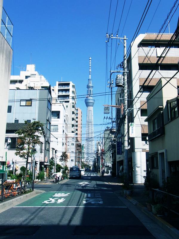 東京スカイツリー【スーベニアプロジェクト】タビモノ 2011:東京 vol.03「 花蕾 - karai - 」