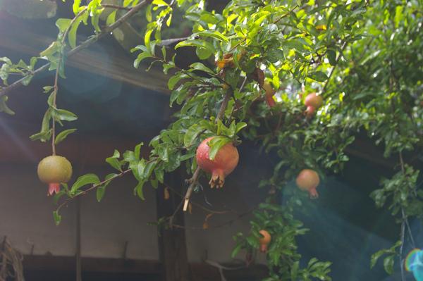 【日下田藍染工房】タビモノ 2012:益子 vol.1 「土祭 2012」